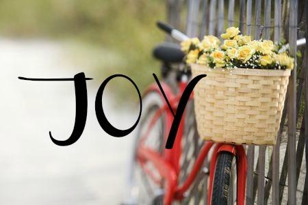Joy.1